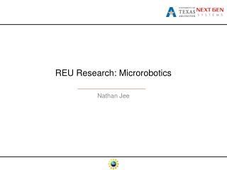 REU Research:  Microrobotics