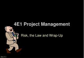 4E1 Project Management