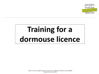Training for a dormouse licence