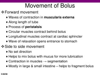 Movement of Bolus