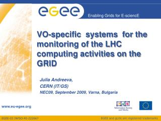 VO-specific  systems  for the   monitoring of the LHC computing activities on the GRID