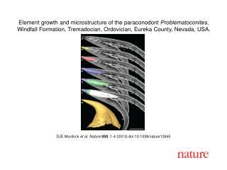 DJE Murdock et al. Nature  000 , 1-4 (2013)  doi:10.1038/nature12645