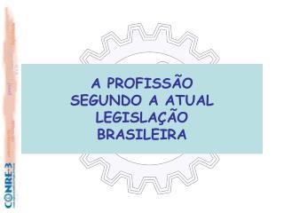 A PROFISSÃO SEGUNDO A ATUAL LEGISLAÇÃO BRASILEIRA