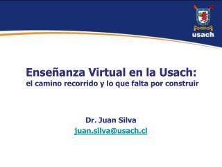 Ense�anza Virtual en la  Usach :  el camino recorrido y lo que falta por construir