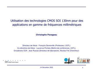 Christophe Pavageau Directeur de thèse : François Danneville (Professeur, USTL)