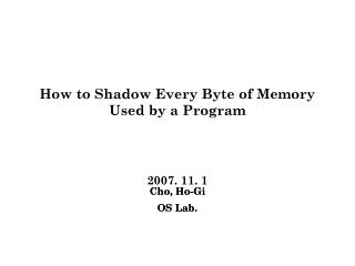 How to Shadow Every Byte of Memory Used by a Program