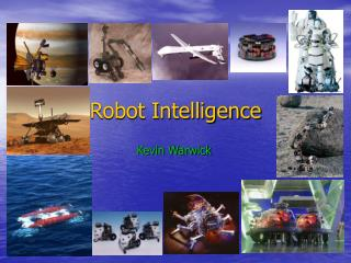 Robot Intelligence