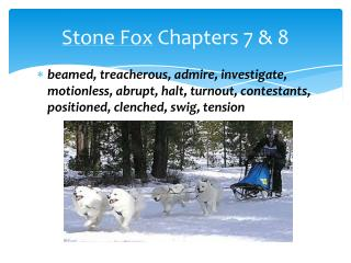 Stone Fox  Chapters 7 & 8