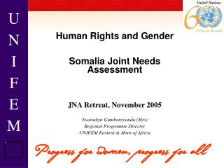 Human Rights and Gender Somalia Joint Needs Assessment