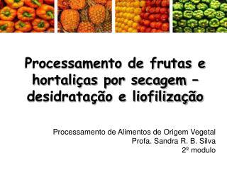 Processamento de frutas e hortaliças por secagem – desidratação e liofilização