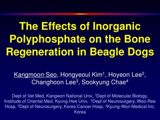 The Effects of Inorganic Polyphosphate on the Bone Regeneration in Beagle Dogs