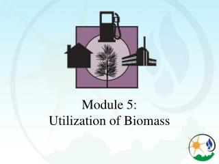 Module 5:   Utilization of Biomass