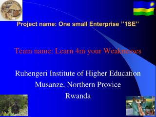 Project name: One small Enterprise ''1SE''