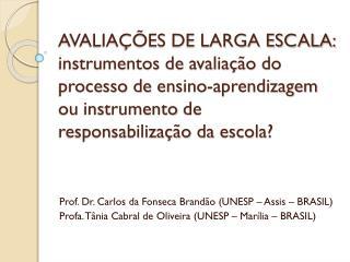 Prof. Dr. Carlos da Fonseca Brand ão (UNESP –  Assis  – BRASIL)