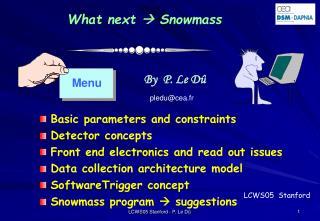 What next   Snowmass