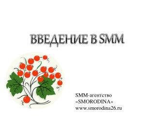 ВВЕДЕНИЕ В  SMM