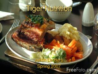 Tiger Nutrition