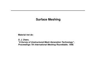 Surface Meshing