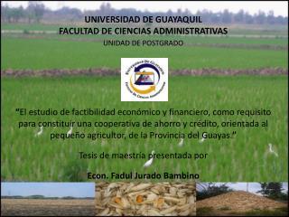 UNIVERSIDAD DE GUAYAQUIL  FACULTAD DE CIENCIAS ADMINISTRATIVAS UNIDAD DE POSTGRADO