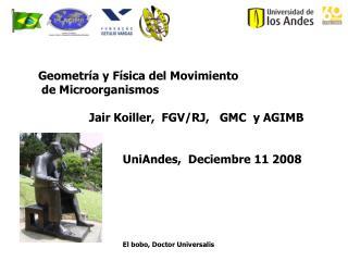Geometr a y F sica del Movimiento  de Microorganismos                                 Jair Koiller,  FGV