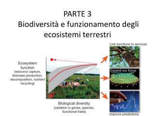 PARTE  3  Biodiversità e funzionamento degli ecosistemi terrestri