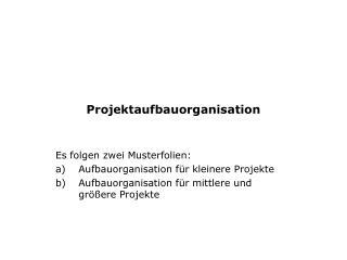 Projektaufbauorganisation