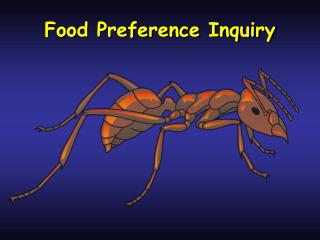 Food Preference Inquiry