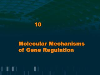 Molecular Mechanisms of Gene Regulation
