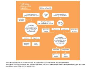 Ts--liaakia-diagnostika-algoritm