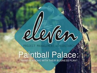 Paintball Palace: