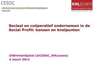 Sociaal en coöperatief ondernemen in de  Social  Profit: kansen en knelpunten