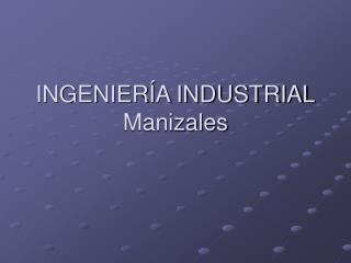 INGENIERÍA INDUSTRIAL Manizales