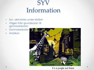 SYV Information
