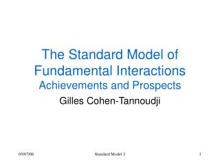The Standard Model of Fundamental Interactions Achievements and Prospects