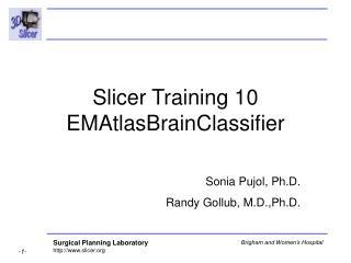 Slicer Training 10  EMAtlasBrainClassifier