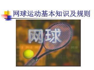 网球运动基本知识及规则