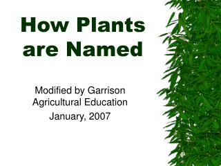 How Plants are Named