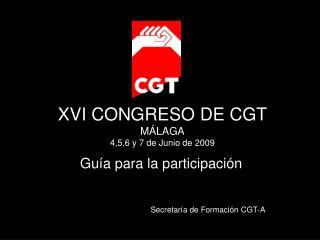 XVI CONGRESO DE CGT MÁLAGA 4,5,6 y 7 de Junio de 2009
