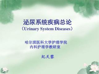 泌尿系统疾病总论 ( Urinary System Diseases )
