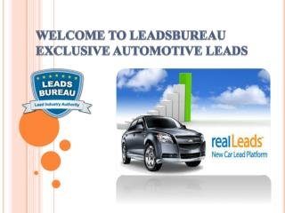 Auto Finance Leads According to Actual Need of The Client