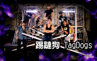 踢踏狗這個團體誕生於澳大利亞雪梨,成員包括六個舞者跟兩個音樂家。他們的特殊舞台包括水和鐵架,以及各種困難的環境,18年來始終受到觀眾親睞。