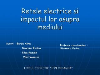 Retele electrice si impactul lor asupra mediului