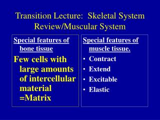 Transition Lecture:  Skeletal System  Review/Muscular System