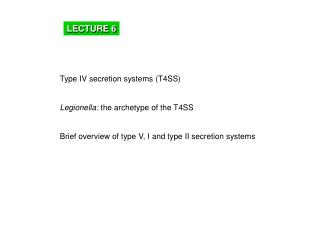 Type IV secretion systems (T4SS) Legionella:  the archetype of the T4SS