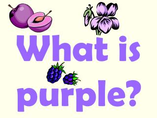 What is purple