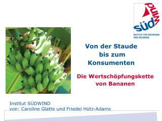 Die Wertschöpfungskette von Bananen
