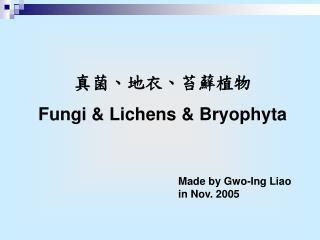 ?????????? Fungi & Lichens  & Bryophyta