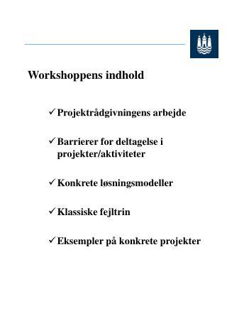 Workshoppens indhold