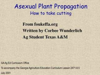 Asexual Plant Propagation