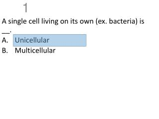 A single cell living on its own (ex. bacteria) is __. Unicellular Multicellular